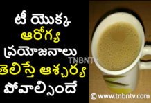 health benifits of tea