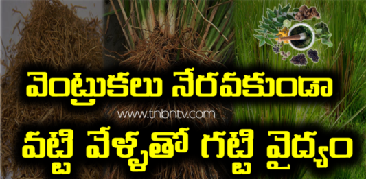 Vetiver Roots for hair