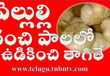 garlic health benefits and side effects